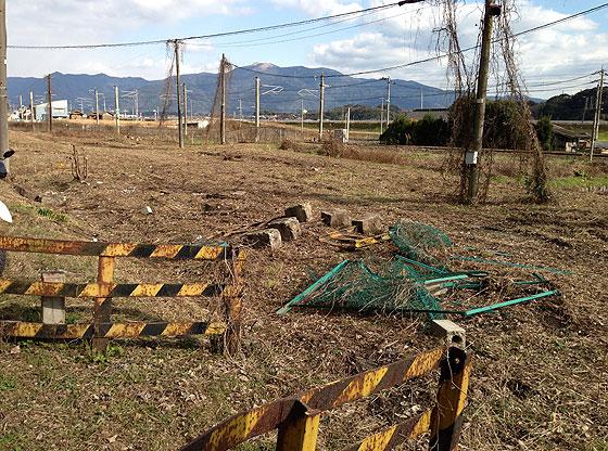 katsuno_20130104-2.jpg