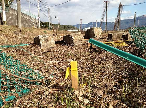 katsuno_20130104-3.jpg