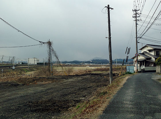 katsuno_20130127-2.jpg