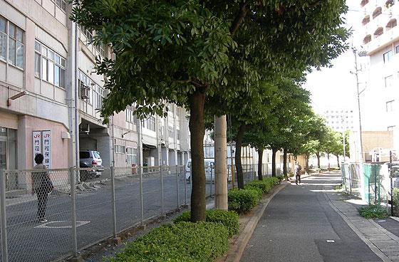 kokura_kita13.jpg