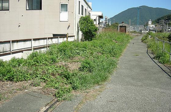 kokura_takahama16.jpg