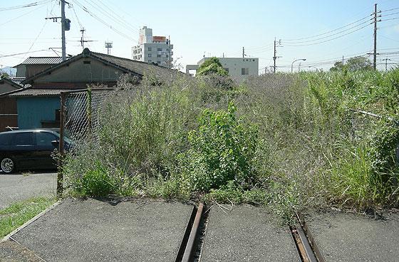 kokura_takahama17.jpg