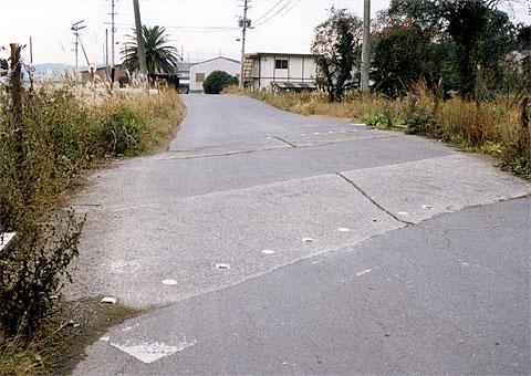 miya9712_8.jpg