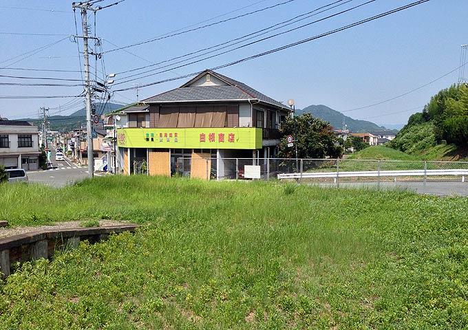 miyada130811-6.jpg