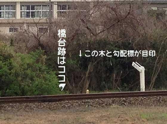 namazuta2.jpg