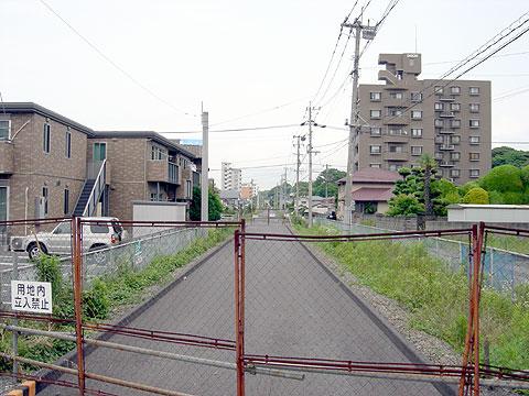 nnr201006_11.jpg