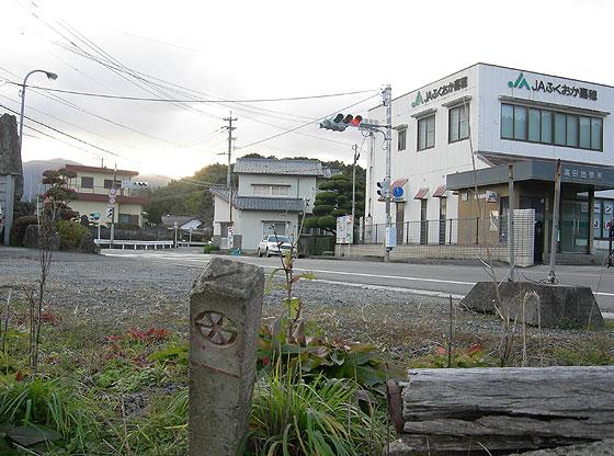nnr_takag1.jpg