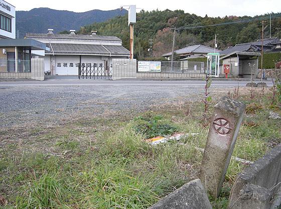 nnr_takag2.jpg