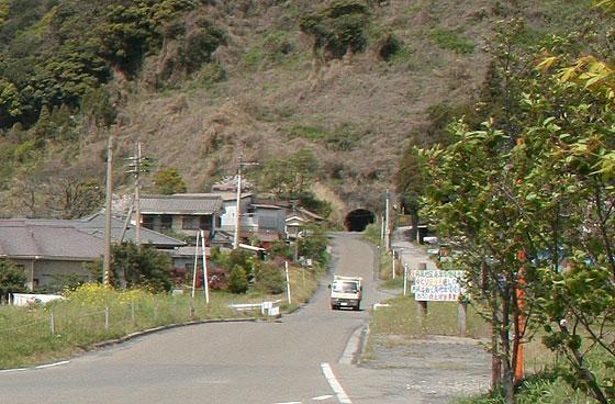 oosumi_131_kaigata.jpg