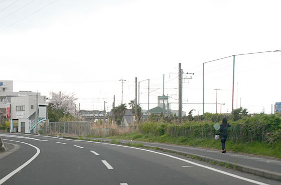 oosumi_158_kokubu.jpg