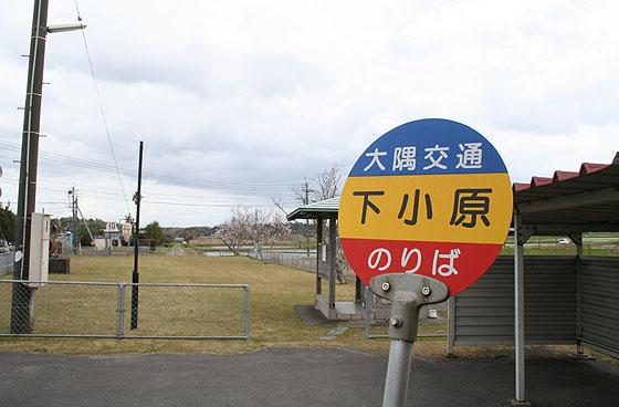 oosumi_43_shimoobaru.jpg