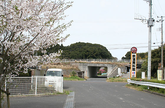 oosumi_63_aira.jpg