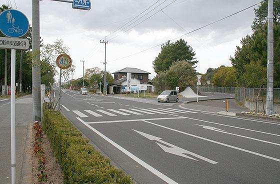 oosumi_shibushi_10.jpg