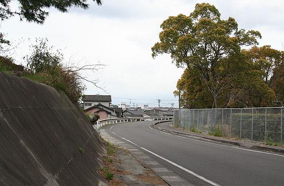 oosumi_shibushi_11.jpg