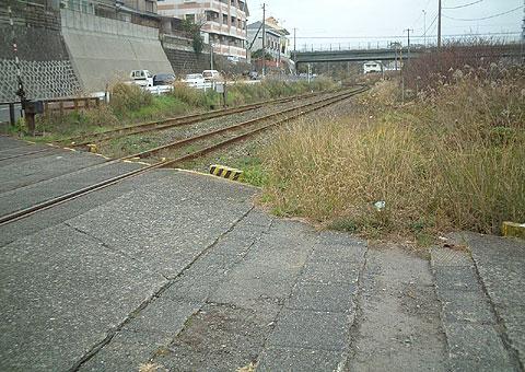 orio_s16.jpg