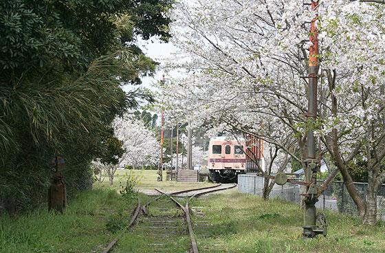 spring02.jpg