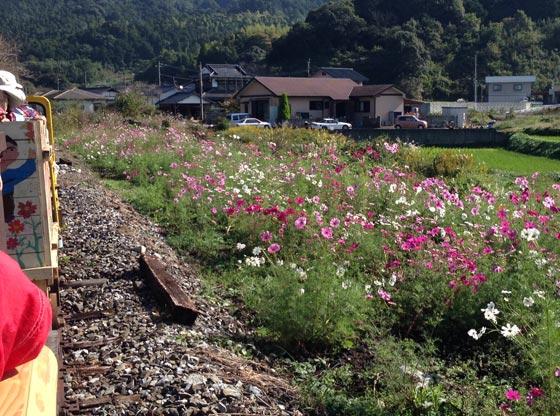 yamatoro201310-10.jpg
