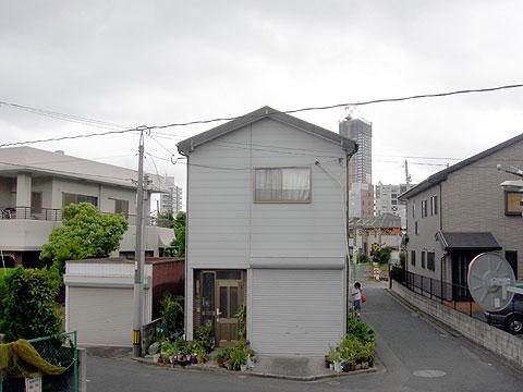 daimon_3.jpg