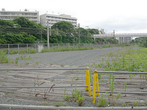 hamako_4.jpg
