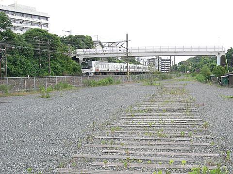 hamako_7.jpg