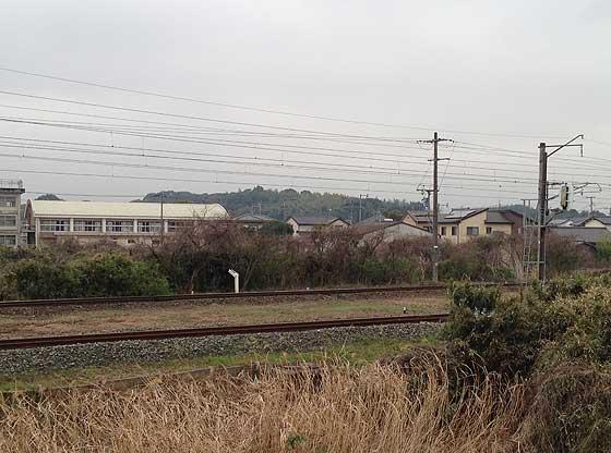 namazuta1.jpg