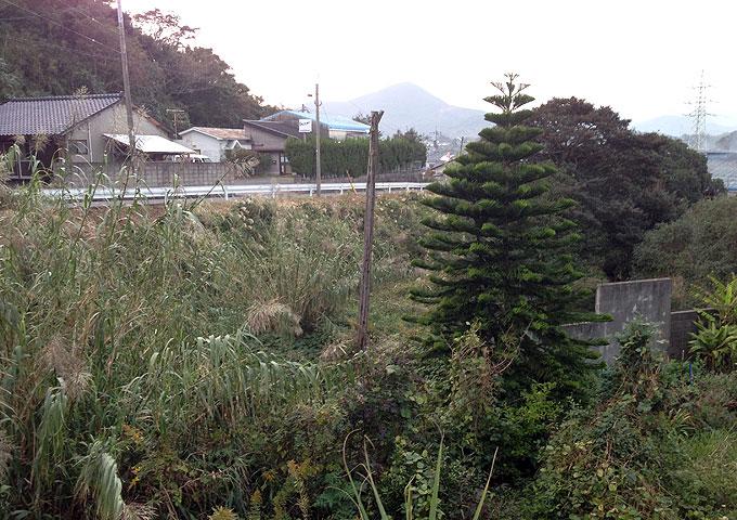 nansatsu009.jpg