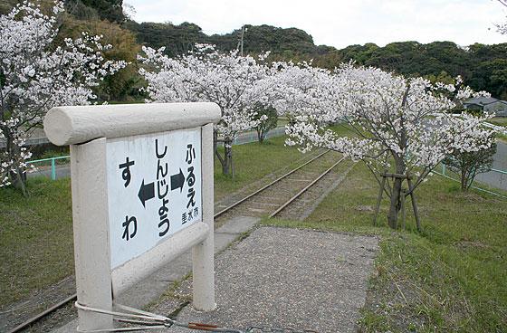 oosumi_114_shinjo.jpg
