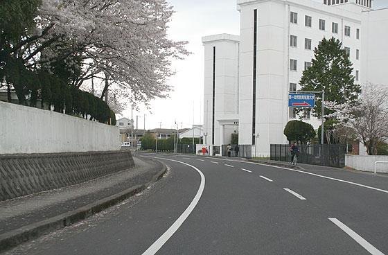oosumi_157_kokubu.jpg