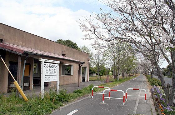 oosumi_92_o-nozato.jpg