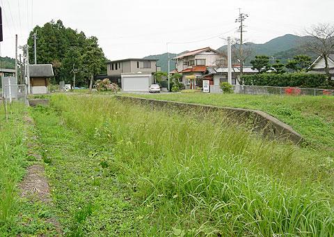 uchi1.jpg