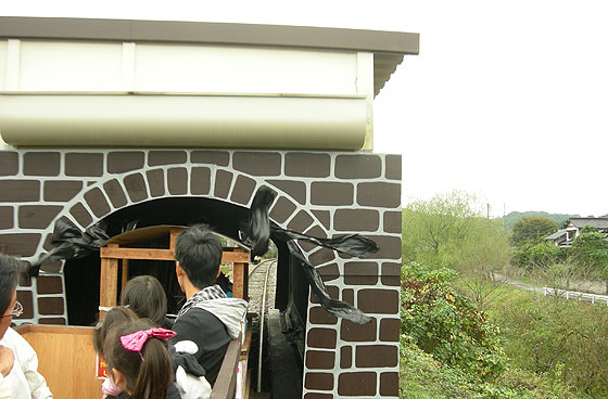 yamatoro201110-16.jpg