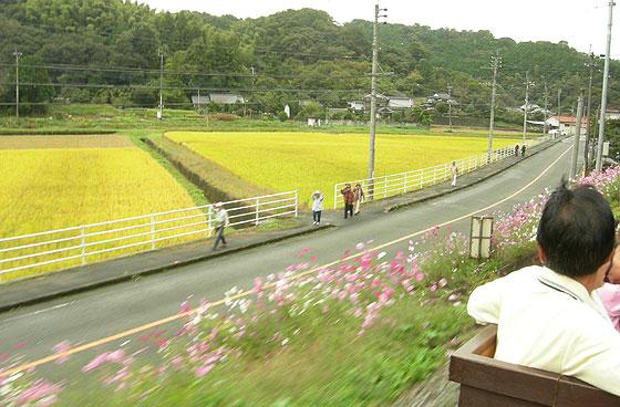 yamatoro201110-4.jpg